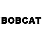 Diely Bobcat